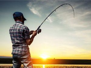 рыбалка на опарыша