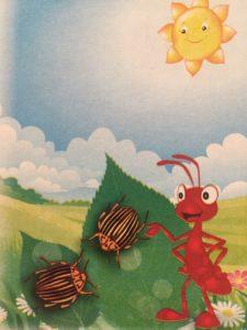 Откуда появился колорадский жук